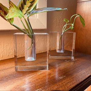 Pair of Solid Crystal Propagation Vases